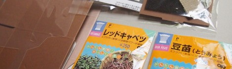 花くらす*野菜くらす スプラウト栽培セット 箱